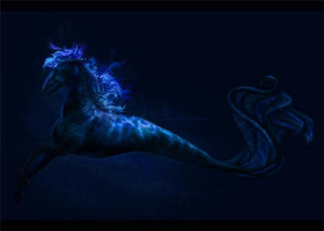 Гиппокампы — водные кони из упряжки Нептуна