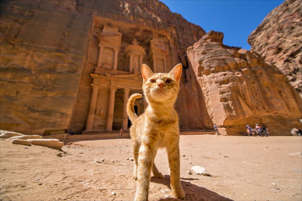 Храм-мавзолей Эль-Хазне в Иордании