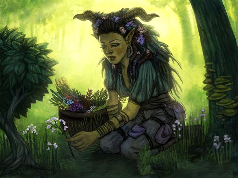Волшебная трава полынь